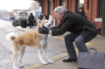 Hachiko  perro siempre a tu lado