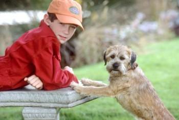 owen y hubben perro de otro mundo