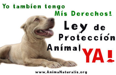 Ley de proteccion animal