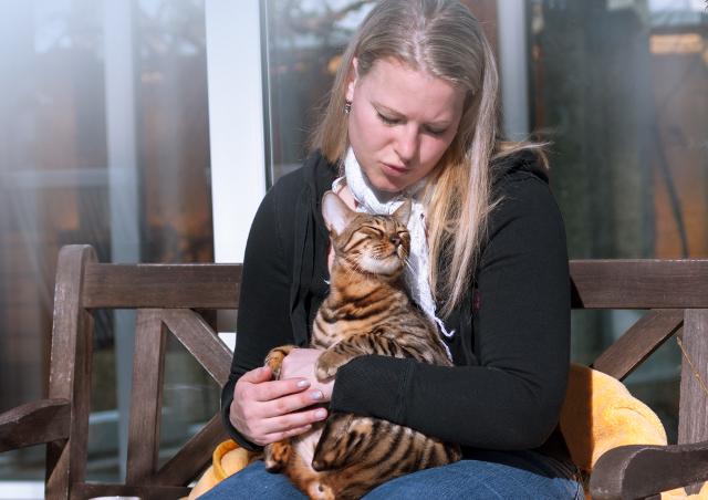 Un gato y su humano